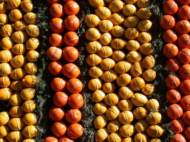 Rubber-banded citrus